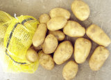 Superior Quality Potato and Reasonable Price