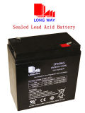 Maintenance Free Lead Acid 6V36ah/10hr UPS Battery with High Quality