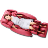 Space Capsule Body Massage Chair (RT8302)