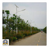 6m Steel Pole with 3mm thickness