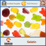 Food Grade Factory Supply Best Price Gelatin 100-300bloom (halal certificate)