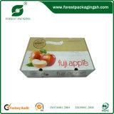 Banana Cardboard Boxes|Banana Corrugated Cartons (FP00121)
