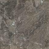 800*800 mm Full Body Marble Porcelain Floor Tile Zmt88191
