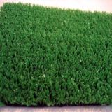 Evergreen Artificial Turf for Your Pet