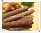Natural Cinnamon/ Cortex Cinnamomi 10: 1 Extract Powder