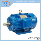 Yd Series Change-Pole Multi-Speed Three Phase Induction Motor