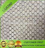 Hot Sale Diamond Bird Net and Anti Bird Netting