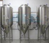 Customize Stainless Steel Fermenter for Home Brewing (ACE-FJG-BN)