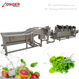 Industrial Blueberry Cleaning Machine Fruit and Vegetable Washing Line