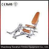 Tz-5051 Seated Leg Extension Equipment Fitness Wholesale