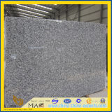 Spray White Granite Slab for Flooring Tile and Countertop
