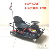 China Supplier 500W Motor Electric Go Kart