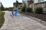 Natural Grey outdoor Paving Stone