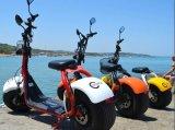 2017 Two Wheel Electric Harley Bike Citycoco 1200W Ce/EEC Certficate