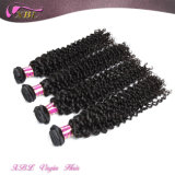 Unprocessed Human Hair Extension Kinky Curly Wholesale Virgin Mongolian Hair