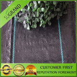 The 100GSM Best Price Ground Cover to Spain
