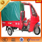Tricycle with Canopy Cargo
