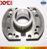 China Factory Supply Tungsten Carbide Shaped Pieces /Carbide Dies