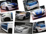 Bodykits Body Kit for Peugeot 207