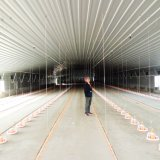 Customized Environment Control Poultry House with Feeding Machines