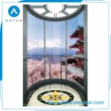 Sightseeing Lift, Observation Elevator with Round Glass Cabin