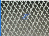 High Quality Diamond Type Razor Barbed Wire (TS-E124)