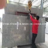 Natural G603 Grey Granite Stone Slab for Tombstone, Countertop, Backsplash