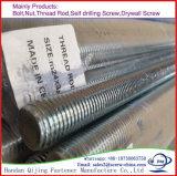 Full Thread Stainless Steel 304 316 Carbon Steel Q235 Threaded Bar, M10X3000