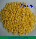 Canned Sweet Corn in Brine