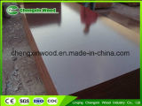 Film Faced Shuttering Plywood Specifications with High Quality