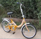 Folding Bicycle F06