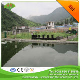Chinese Combined Sewage Treatment to Dislodge Tanning Wastewater Sundries