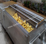 Potato/Carrot/Radishes/Onion/Cassava Washing Cleaning and Peeling Machine