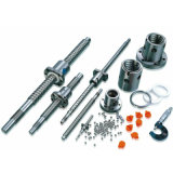 Ball Screw with High Precision Rolled Ballscrew for CNC Router
