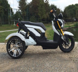 60V1000W Electric Motor Tricycle, Adult Electric Powered Dirt Motorcycle
