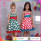 Baby Cotton Frocks/Girls Smoking Dress (6103#)