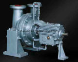 Y Hot Water Circular Pumps