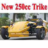 3 Wheeler EEC Racing ATV 250cc