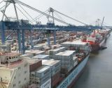 Consolidate Ocean Shipping, Consolidate, FCL, LCL From China to Worldwide