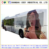 Promotion Price One Way Vision Film One Way Vision Window Screen