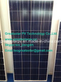 Excellent Efficiency 150W Poly Solar Panel From Chinese Manufacturer