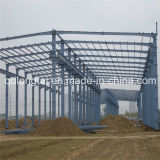 Ltx208 Steel Structure Building with Free Cost Dfrawing Paper