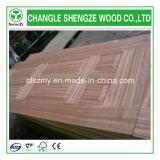 Veneer Moulded Door Skin/ HDF Moulded Door Skin