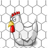 High Quality Galvanized Chicken Wire Mesh (ECW-01)