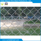 Weiyue Chain Link Fence in Fence