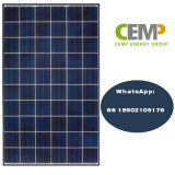 TUV Ce Approved 265W Polycrystyalline Solar Module with High Power Output