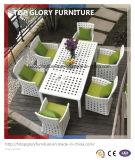 Modern Patio Rattan Dining Furniture Set (TG-1617)
