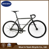 New Version Fixie /Fixed Gear/Road Racing Fixie Bicycle Bike (Racing 4) Fixie