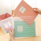 foshion plastic clear document folder file bag(PP bag)