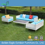Outdoor Furniture Wicker Furniture Sofa Set